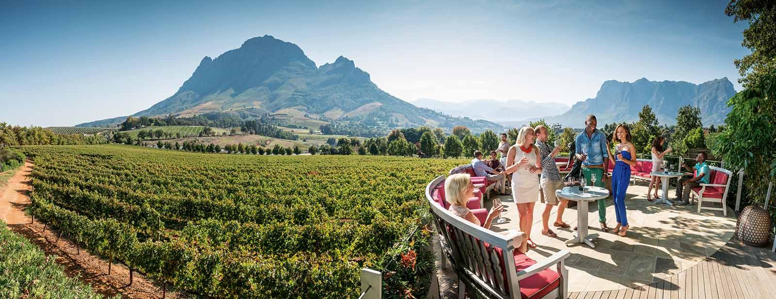 טעימות יין בדרום אפריקה