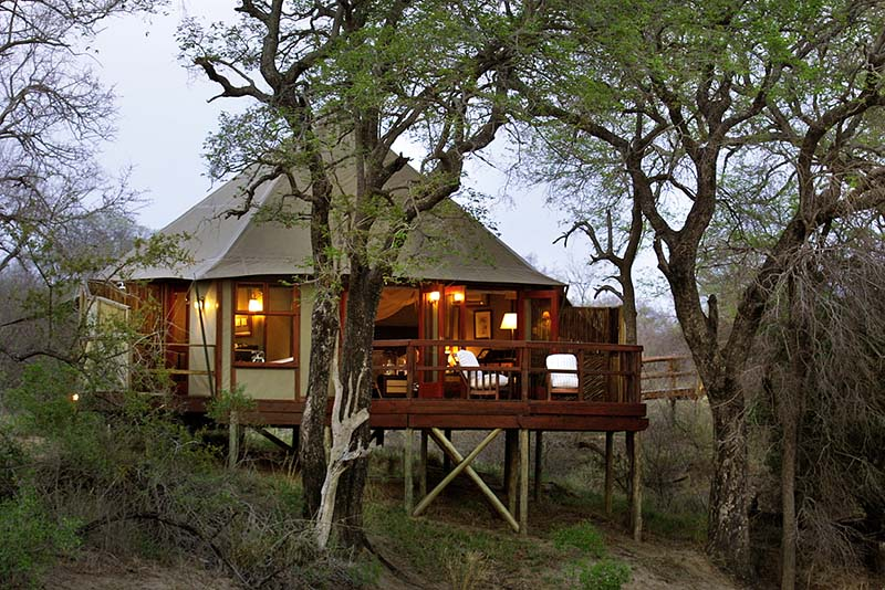 2. SIGNATURE HAMILTONS TENTED CAMP